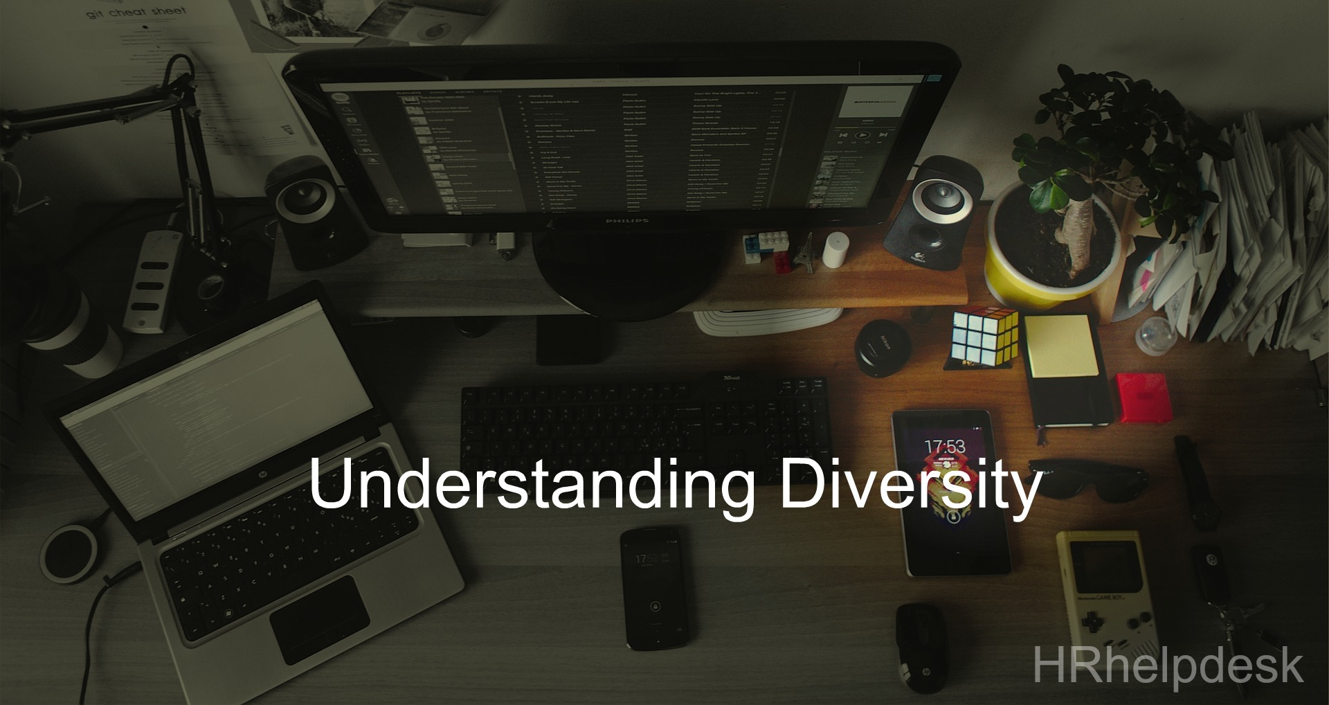 understanding diversity in organization culture